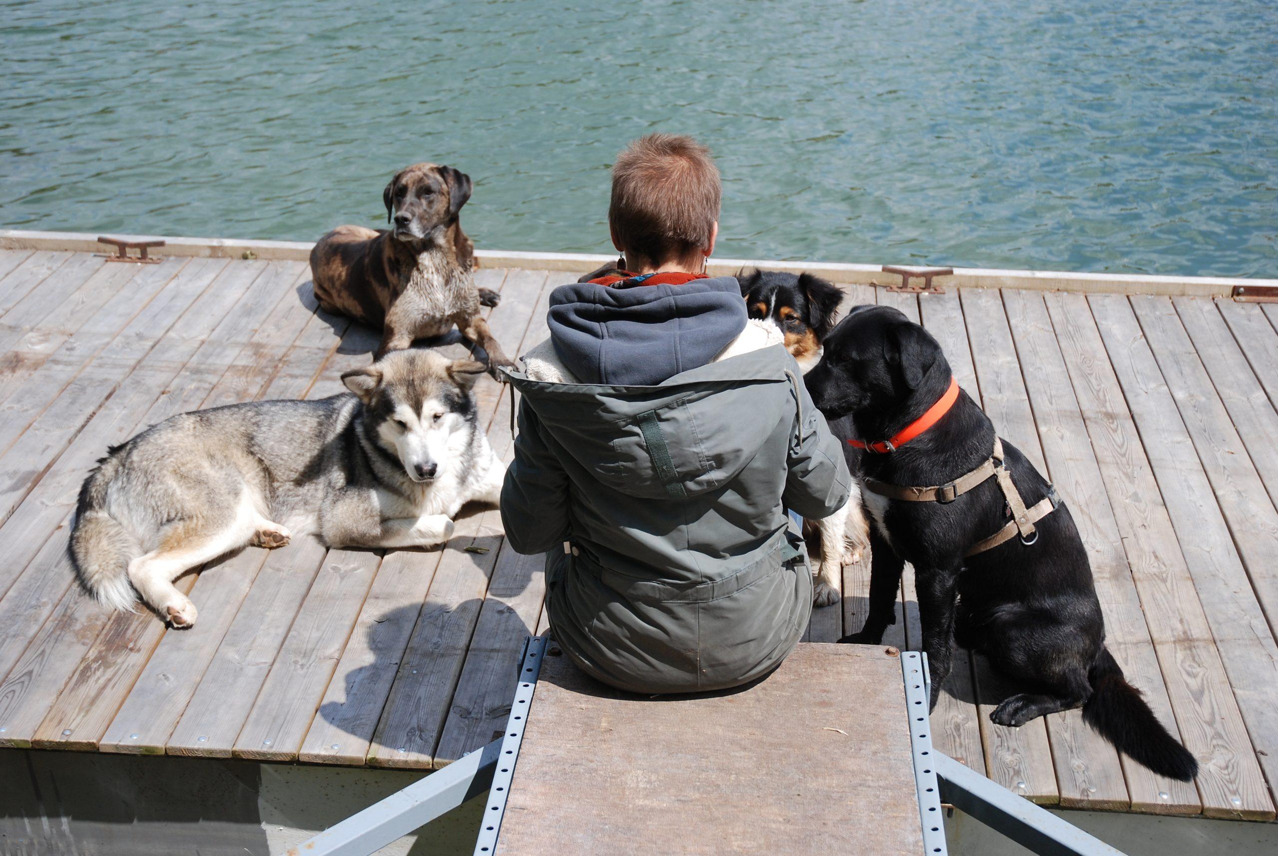 heloise hallier pet sitting éducatrice canin