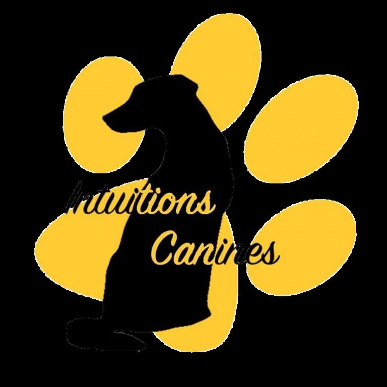 logo intuitions canines educateur chien drôme ardèche